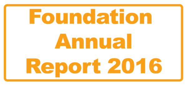 Foundation Annual Report 2016